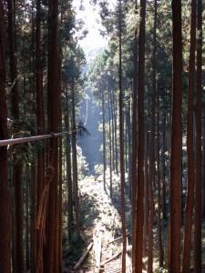 atsugi3